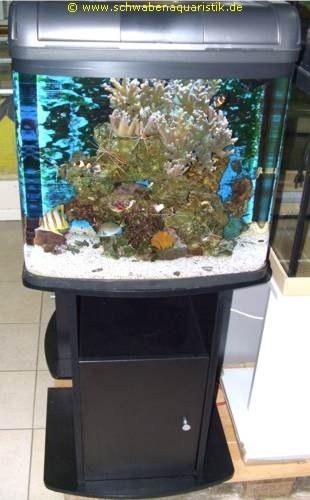 aquaristik meerwasseraquarien 55l und 95l komplett. Black Bedroom Furniture Sets. Home Design Ideas
