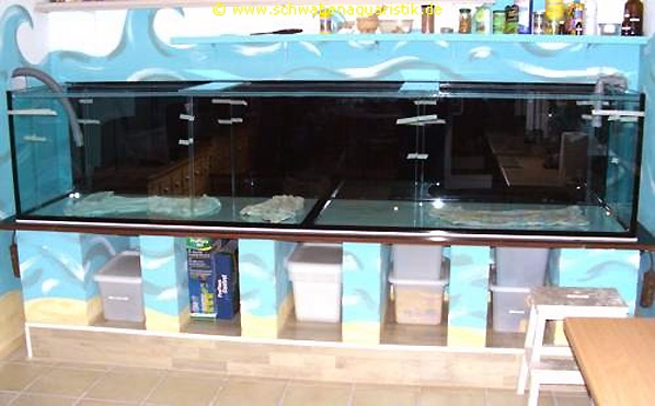 aquarium bauen aquarium xxcm aus mm glas mit einer aus. Black Bedroom Furniture Sets. Home Design Ideas