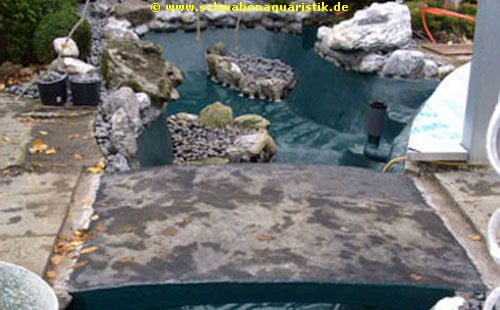 Aquaristik teichbau for Fischbesatz teich